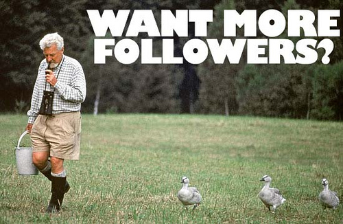 cómo ganar 40.000 followers en twitter