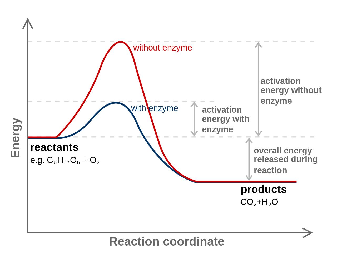 energía de activación - regla 5 segundos - idea ridícula