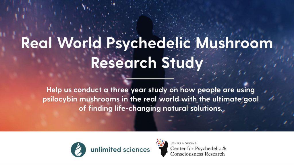 estudio sobre hongos psicodélicos